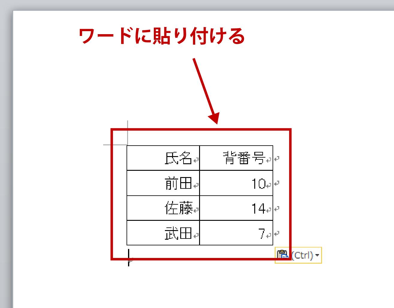 ワード・エクセル変換解説画像