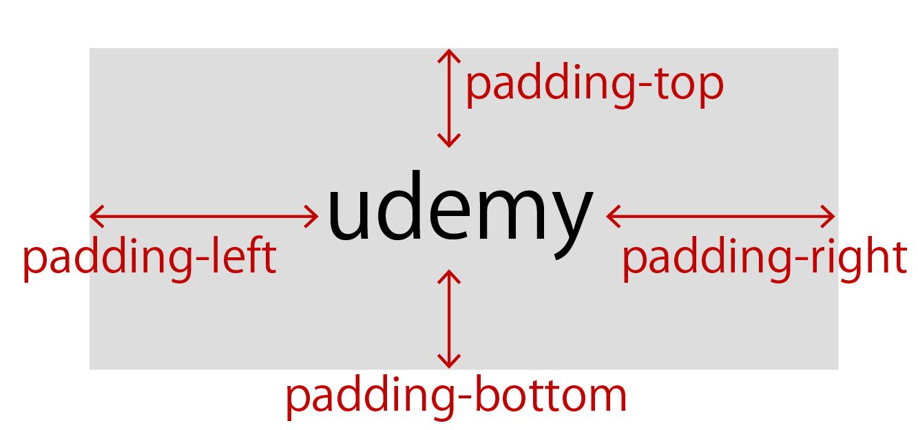padding-top、padding-right、padding-bottom、padding-leftの解説